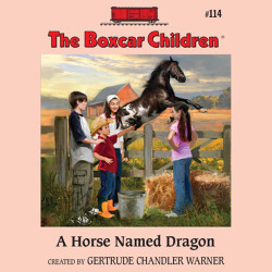 A Horse Named Dragon Audio Book Tales2go